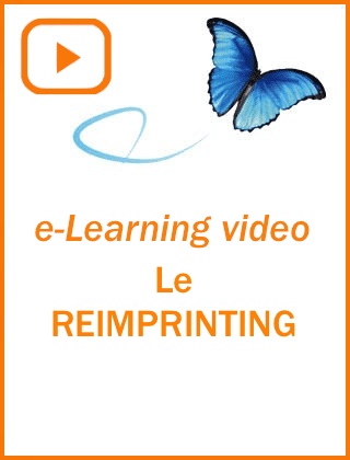 Cours ea-learning PNL Reimprinting